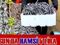 Samsun'da hamsi 5 lira