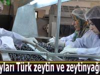 Hacı adayları Türk zeytin ve zeytinyağı yiyecek