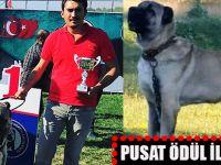 PUSAT'a Ankara'da Ödül