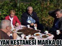 Nebiyan Kestanesi Türkiye'nin Markası Olacak