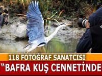 Bafra Kuş Cennetinde 118 Fotoğrafcı