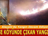 Alaçam Köse Köyde Orman Yangını 3 Gündür Devam ediyor