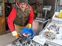 Denizin Dibinde Balık Fiyatları Dudak Uçuklatıyor