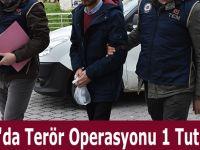 Samsun'da Terör Operasyonu 1 Tutuklama