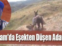 Alaçam'da Eşekten Düşen Adam Öldü