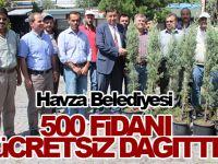 Havza Belediyesi 500 Fidanı Ücretsiz
