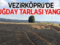 Vezirköprü'de Buğday Tarlası Yandı