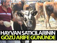 Hayvan Satıcılarının Gözü Arife Gününde