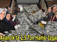 Ayancık'ta 2,5 Ton Hamsi Izgara Yapıldı