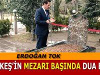 ERDOĞAN TOK TÜRKEŞ'İN MEZARINI ZİYARET ETTİ
