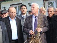 Alaçam'da Arı Üreticilerine Kestane Fidanı