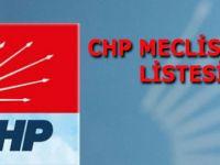 CHP BAFRA MECLİS ÜYE LİSTESİ