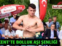 YAKAKENT'TE BOLLUK AŞI ŞENLİĞİ