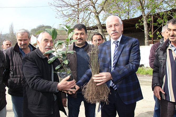 alacam-belediyesinden-ari-ureticilerine-ucretsiz-fidan-dagitti3.jpg