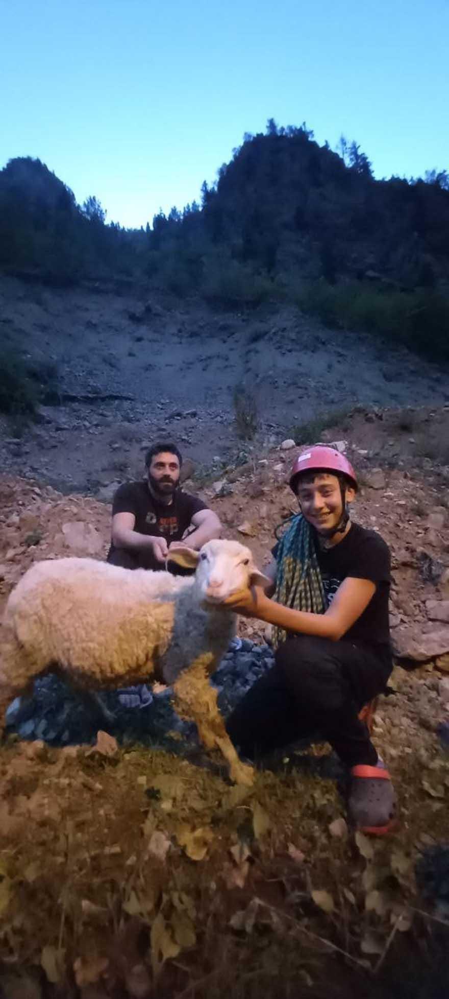 dedesinin-kayaliklarda-mahsur-kalan-koyununu-dagci-torunu-kurtardi-2.jpg